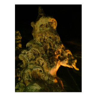 Grutas de la Estrella Cave Formation PICT0117A Postcard