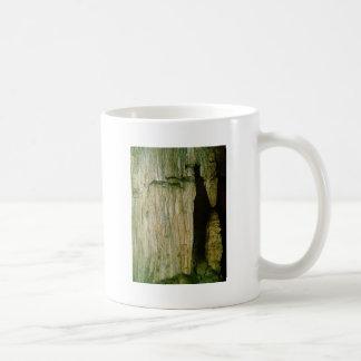 Grutas de la Estrella Cave Formation PICT0128A Coffee Mug