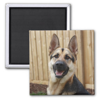 GSD Head Shot 2 Inch Square Magnet