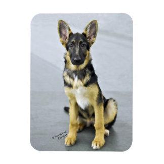 GSD Puppy Magnet