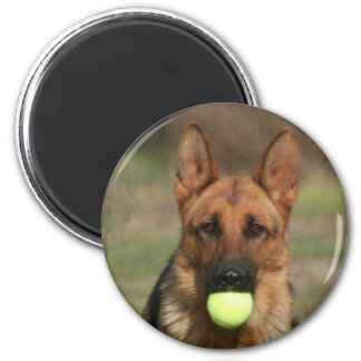 GSD with Tennis Ball 2 Inch Round Magnet
