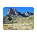 Guadalupe Mountains National Park Magnet Rectangular Magnet