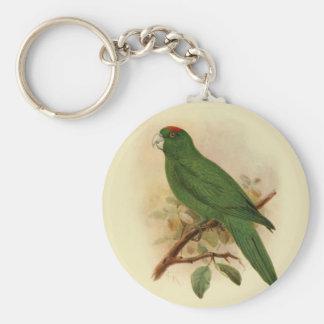 Guadeloupe Parakeet Extinct 1908 Keychains