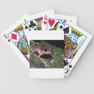Guajon tree frog design bicycle playing cards