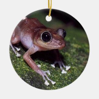 Guajon tree frog design Double-Sided ceramic round christmas ornament