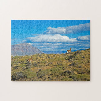 Guanaco Country, Patagonia Puzzle