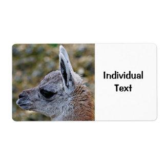 guanaco joven etiquetas de envío
