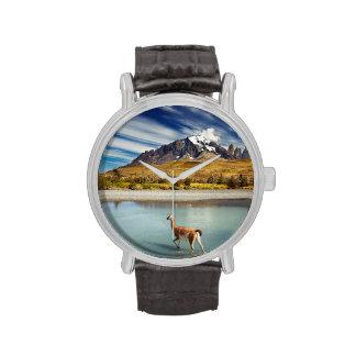 Guanaco que cruza el río en Torres del Paine Relojes
