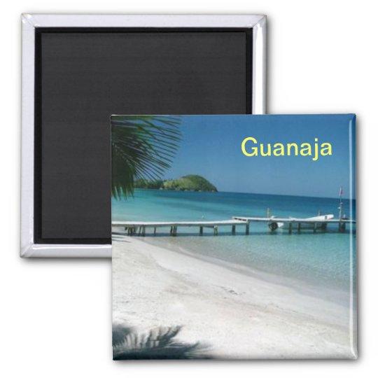 Guanaja magnet