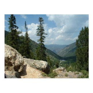 Guanella Pass near Georgetown Colorado Postcard