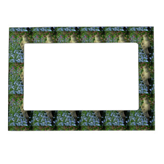 Guanyin and Forget-Me-Nots, photograph Magnetic Frame