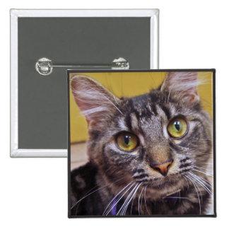 Guapa el gato pin cuadrado