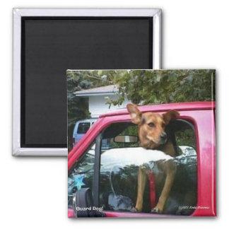 Guard Dog! Magnets