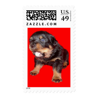 Guard Duty Stamp