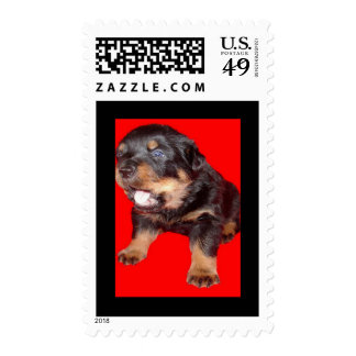 Guard Duty Stamps