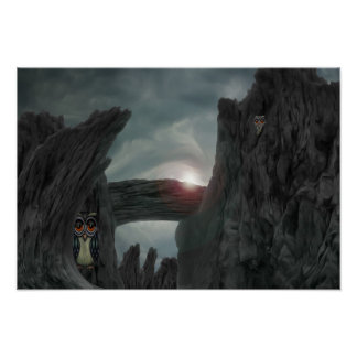 Guard Owls in Devil's Canyon Poster