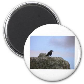 Guarda del cuervo de Henge de piedra Imán Redondo 5 Cm