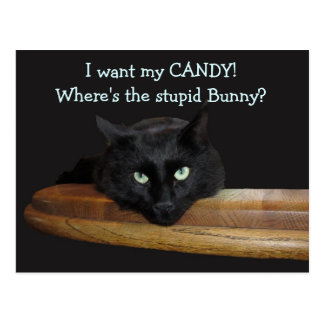 Guardabosques el conejito estúpido Pascua feliz Postal