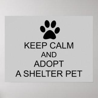 Guarde al mascota tranquilo del refugio póster