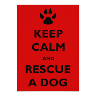 Guarde el rescate tranquilo del perro invitación 12,7 x 17,8 cm