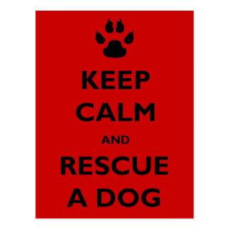 Guarde el rescate tranquilo del perro postal