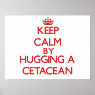 Guarde la calma abrazando un cetáceo poster
