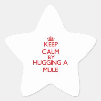 Guarde la calma abrazando una mula colcomania cuadrada