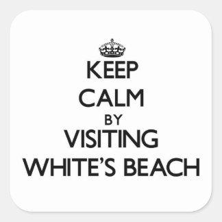 Guarde la calma al lado de la playa Wisconsin de Pegatina Cuadradas