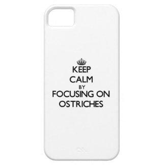 Guarde la calma centrándose en avestruces iPhone 5 Case-Mate coberturas