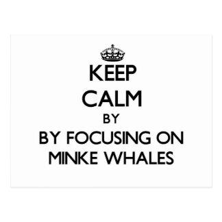 Guarde la calma centrándose en ballenas pequeñas tarjeta postal