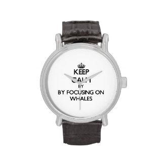 Guarde la calma centrándose en ballenas reloj