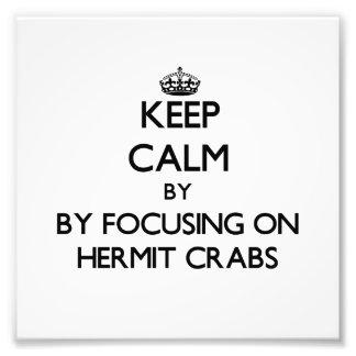 Guarde la calma centrándose en cangrejos de ermita
