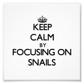 Guarde la calma centrándose en caracoles