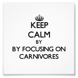 Guarde la calma centrándose en carnívoros cojinete