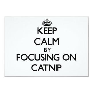 Guarde la calma centrándose en Catnip Comunicado