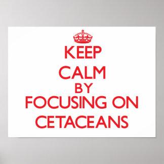Guarde la calma centrándose en cetáceos impresiones