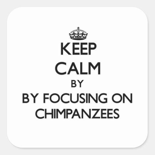 Guarde la calma centrándose en chimpancés pegatina cuadrada