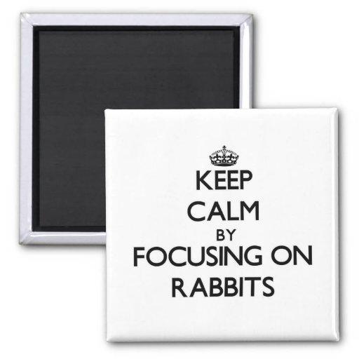 Guarde la calma centrándose en conejos imanes de nevera