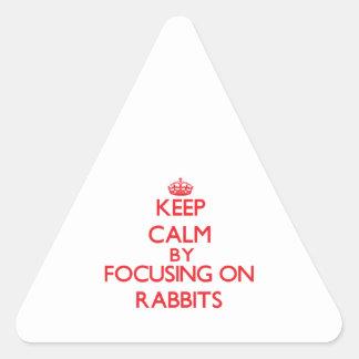 Guarde la calma centrándose en conejos pegatinas de trianguladas