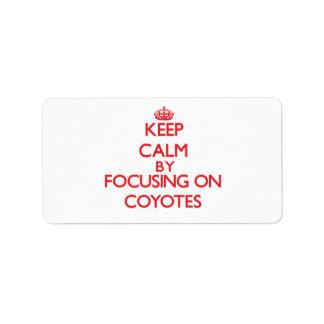 Guarde la calma centrándose en coyotes etiquetas de dirección