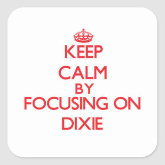 Guarde la calma centrándose en Dixie Pegatina Cuadrada