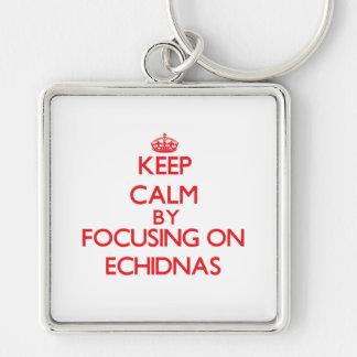 Guarde la calma centrándose en Echidnas Llaveros Personalizados