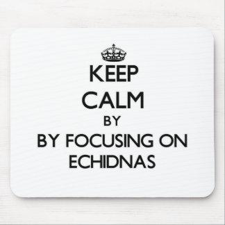 Guarde la calma centrándose en Echidnas Tapete De Ratones