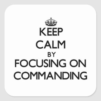 Guarde la calma centrándose en el mando