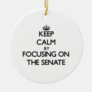 Guarde la calma centrándose en el senado ornamento de reyes magos