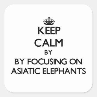 Guarde la calma centrándose en elefantes asiáticos pegatina cuadrada