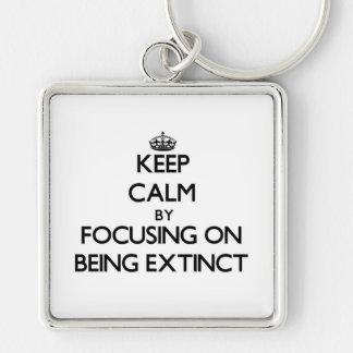 Guarde la calma centrándose en ESTAR EXTINTO Llaveros Personalizados