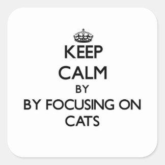Guarde la calma centrándose en gatos calcomanía cuadradase