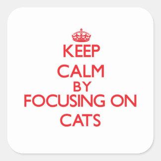 Guarde la calma centrándose en gatos pegatina cuadrada