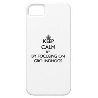 Guarde la calma centrándose en Groundhogs iPhone 5 Fundas